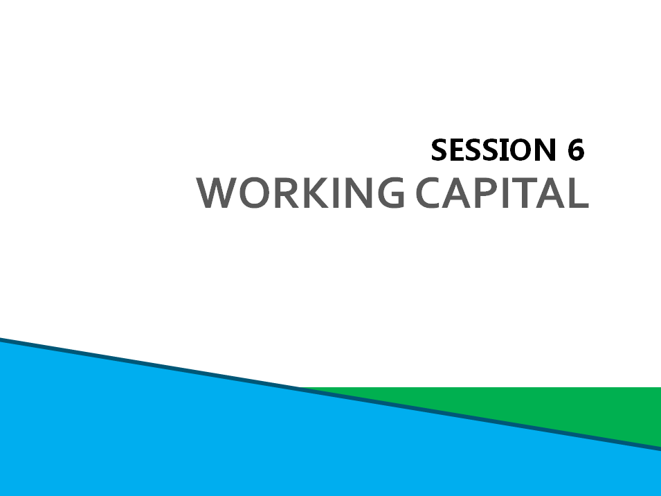 Session 6: Working Capital and Loan Applications Screenshot